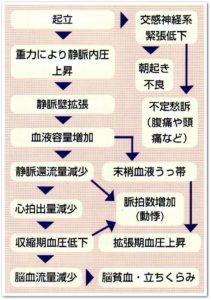 千葉県の整体院で起立性調節障害の小学生が多く通院する整体院が教える起立性調節障害のメカニズム